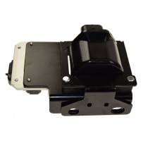 Ignition Coil/Module Assembly
